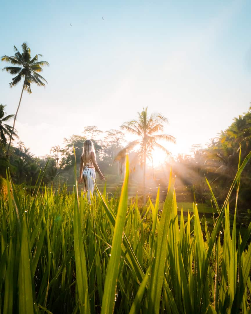 Bali-best-sunrise-spots-tegallalang-ricefields