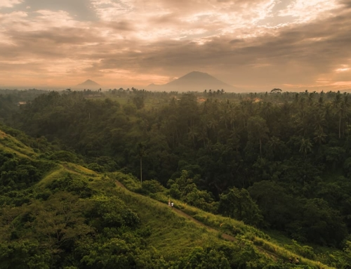 CAMPUHAN RIDGEWALK UBUD – The Complete Guide