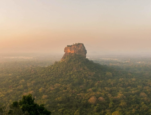 SIGIRIYA THINGS TO DO – The Complete Guide