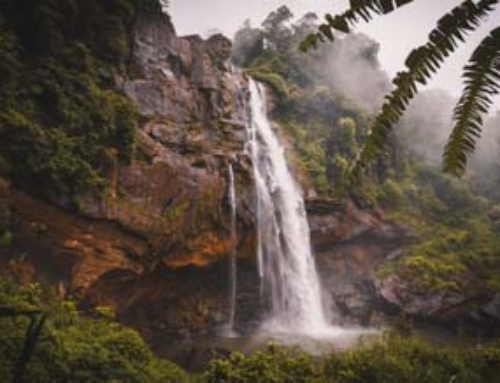 ABERDEEN FALLS SRI LANKA – The Complete Guide