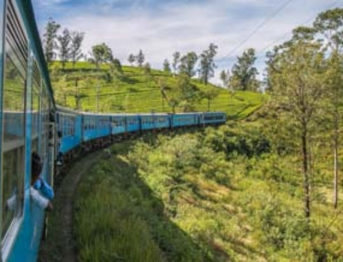 BEST PLACES TO VISIT IN SRI LANKA 2020 – The Complete Guide